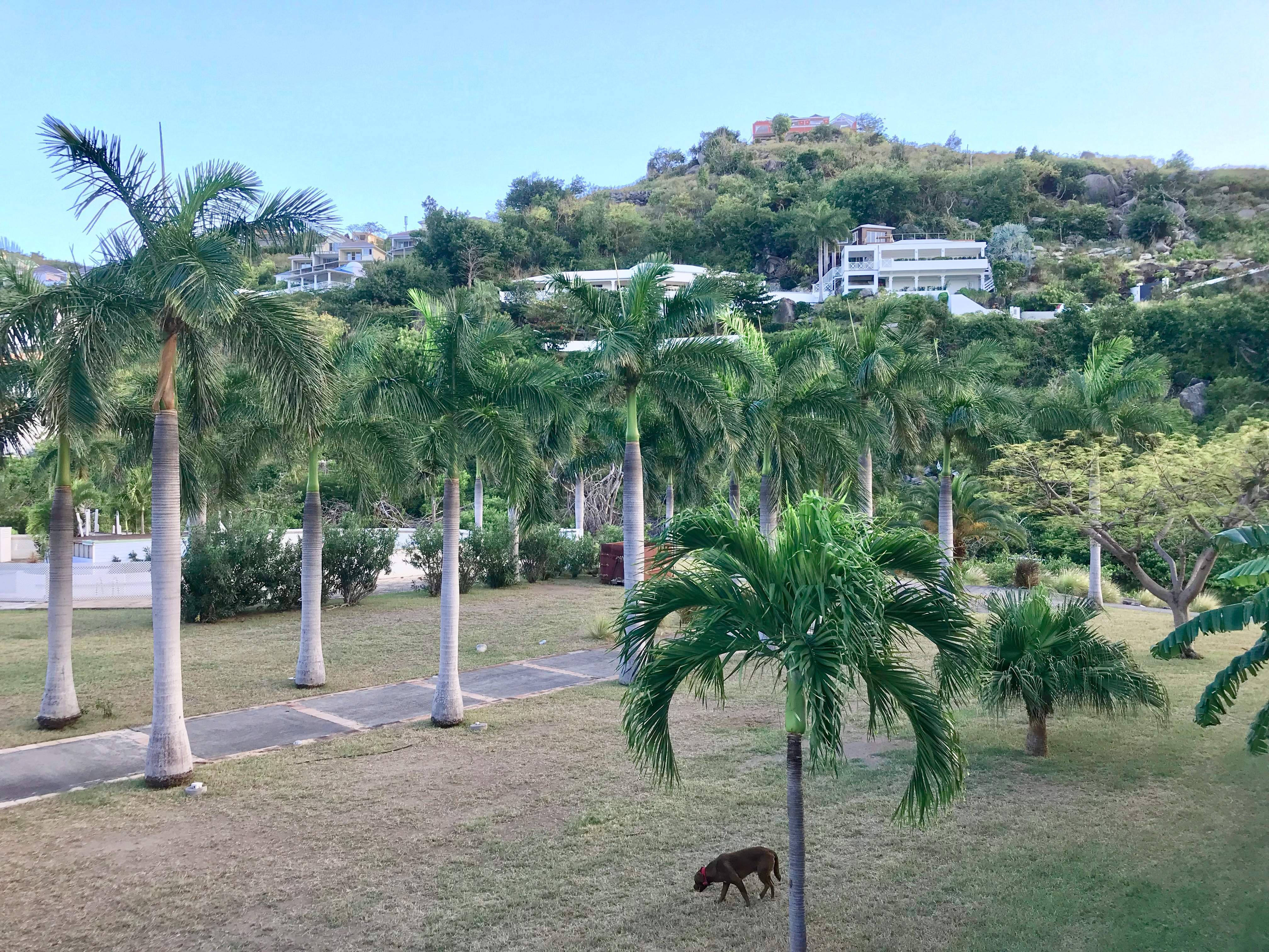 St Barth Invest Apartment St. Martin